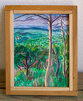 Paisaje con monte bajo del Montseny