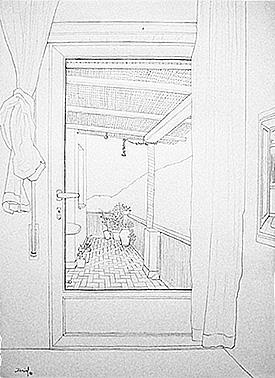 Interior con terraza y cañizo