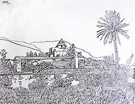 La noria del Cortijo Grande con palmera