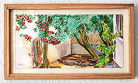 Nook with olive, bougainvillea and vineyard