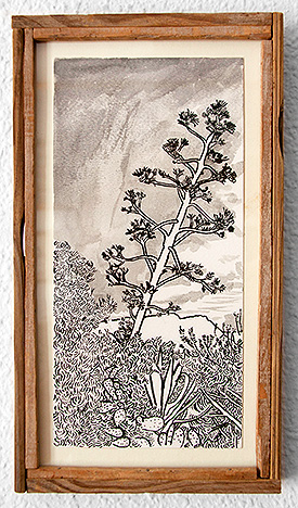 Agave with pine and prickly pear